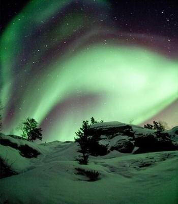 Aurora Green